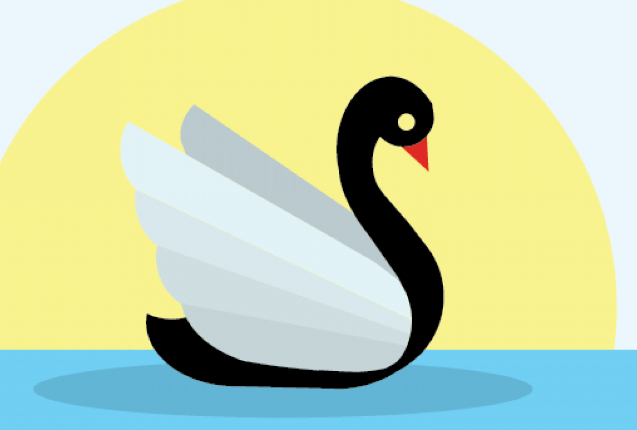 The swan - student project