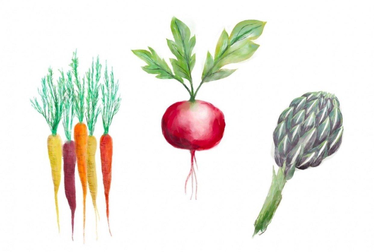 Harvest Season - student project