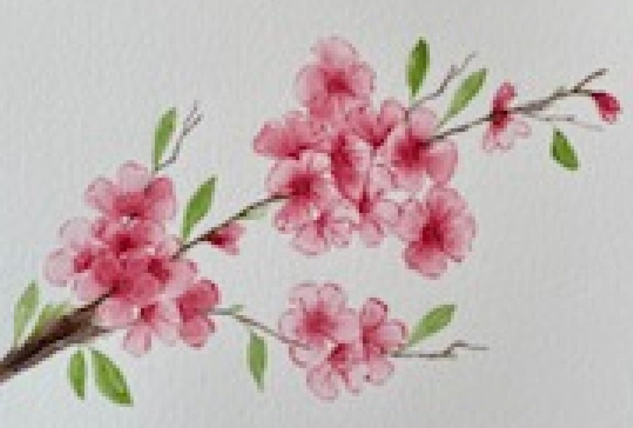 Cherry Blossoms with a Wedge Brush Project - student project