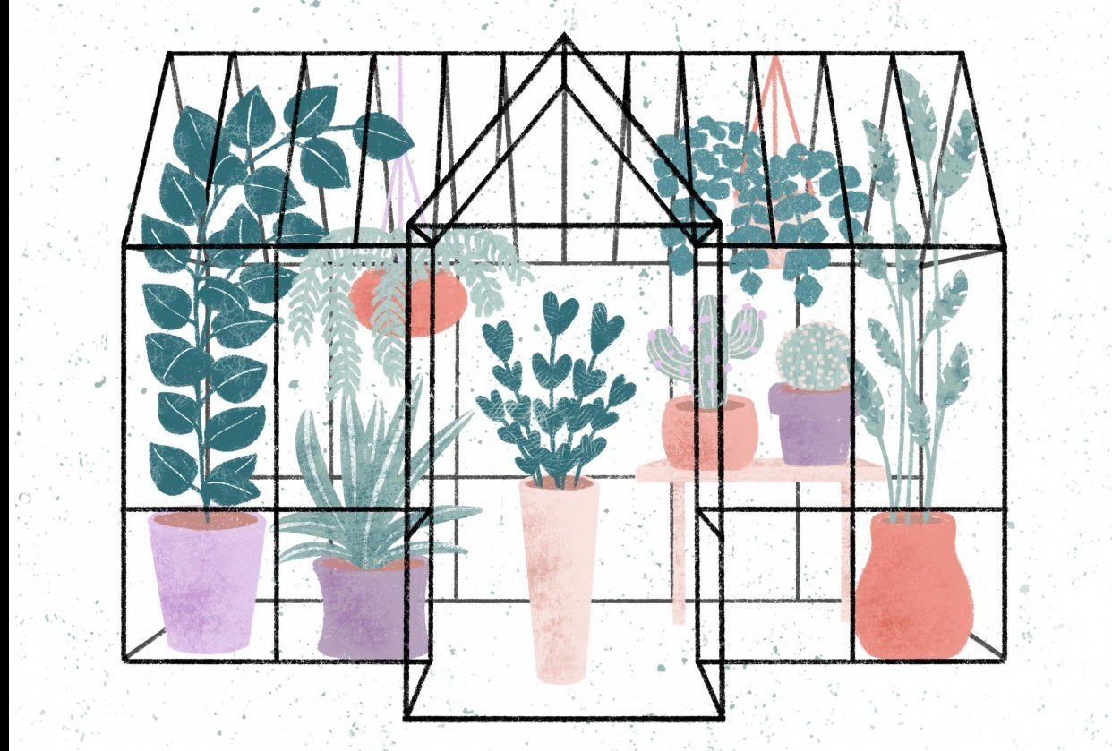 Greenhouse - student project