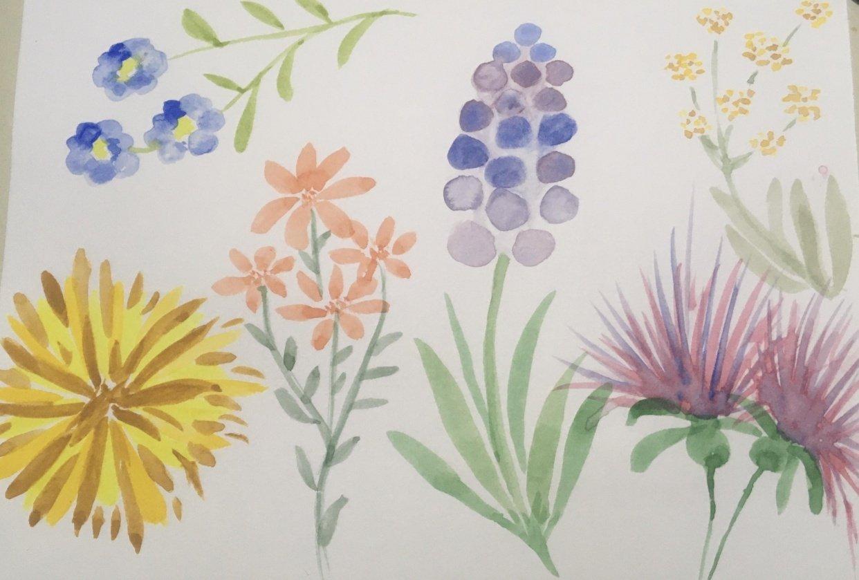 Pruebas florales en acuarela - student project
