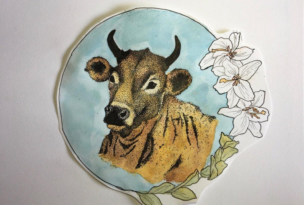 Bull - student project