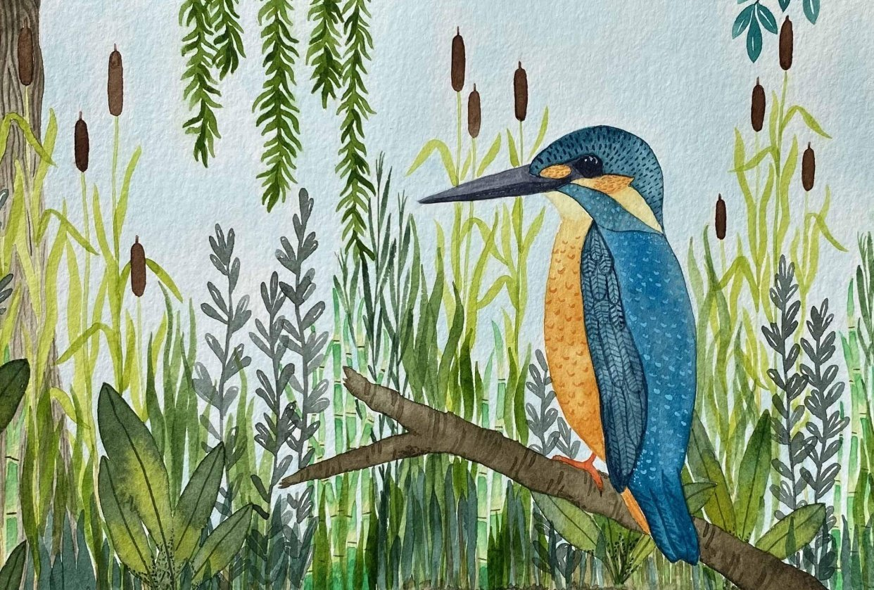 Watercolor Textures: Kingfisher - student project