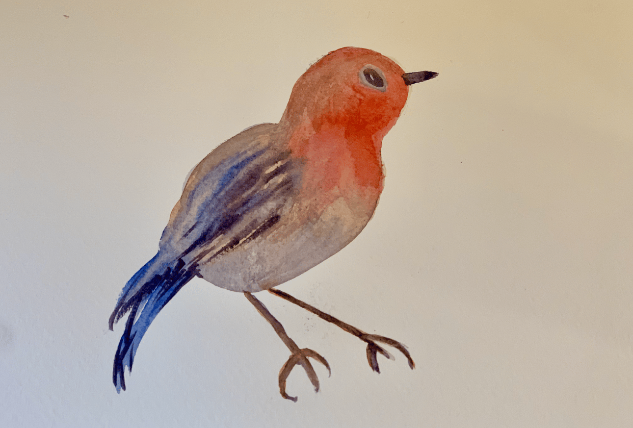 Hello Little Robin! - student project