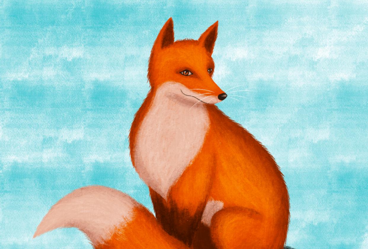 Fox - student project