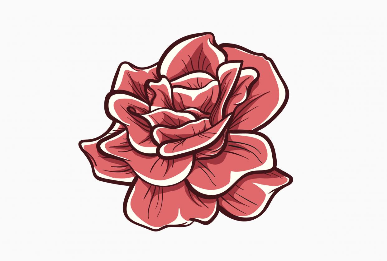 Rose Illustration Ink - student project