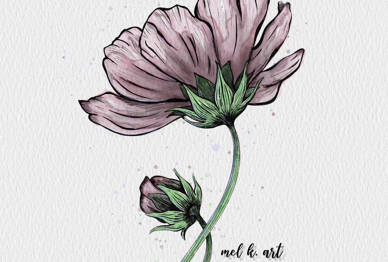 Purple poppy flower - student project
