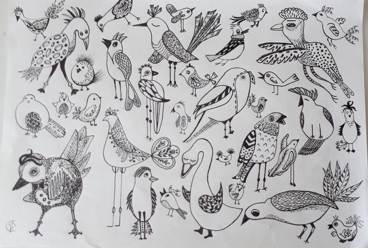 Birds with lots of Personalities..4 sets - student project