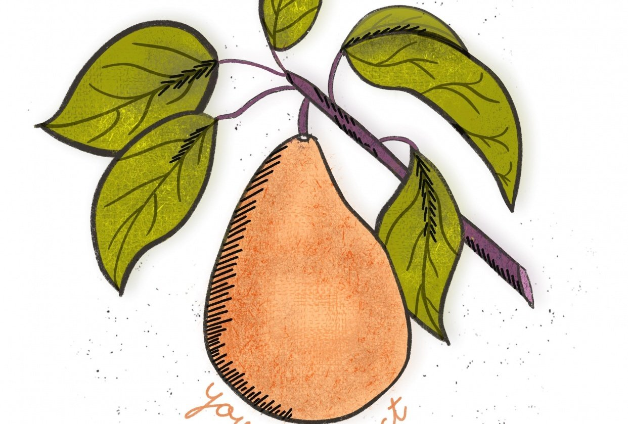 Pear-fect class! - student project