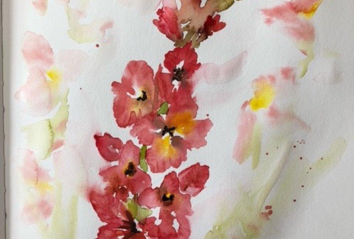 Gladiolus - student project