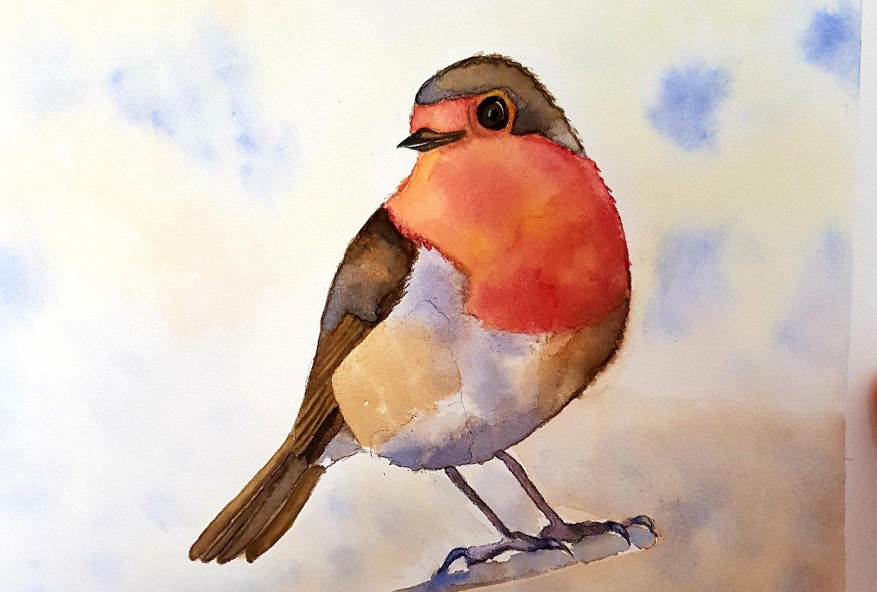 Watercolour Robin - student project