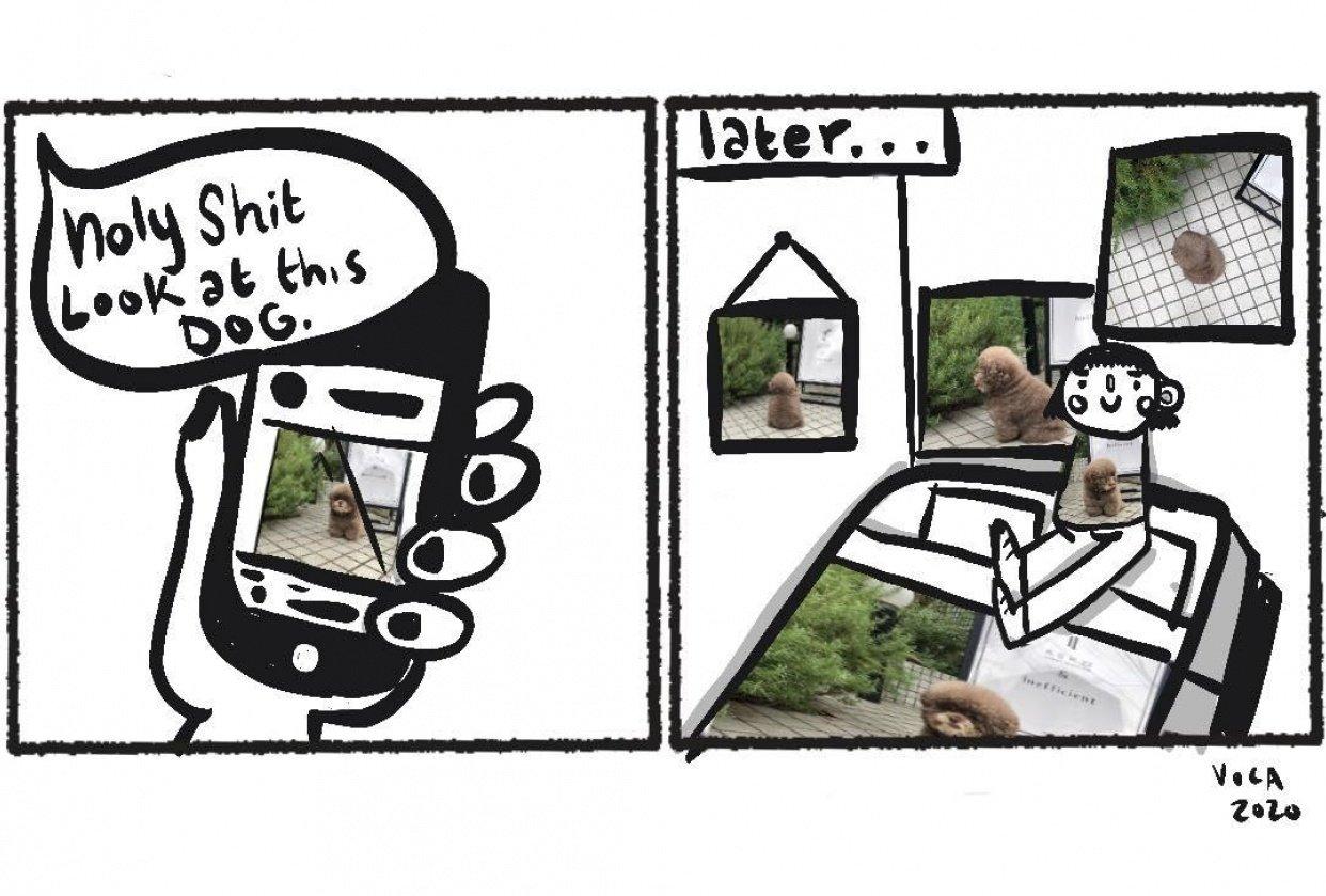 Dog Celebrity Comic - student project