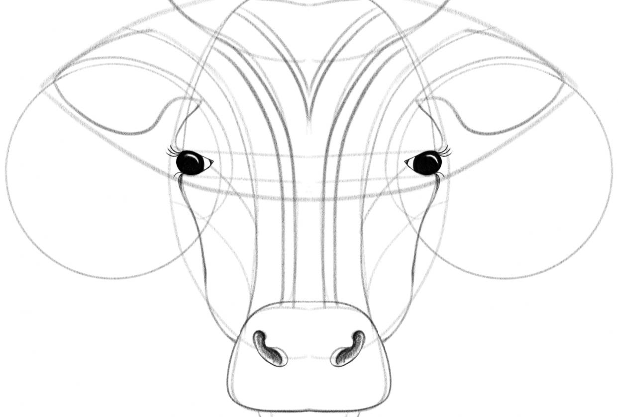 Geometric Illustration: Animal Face - student project