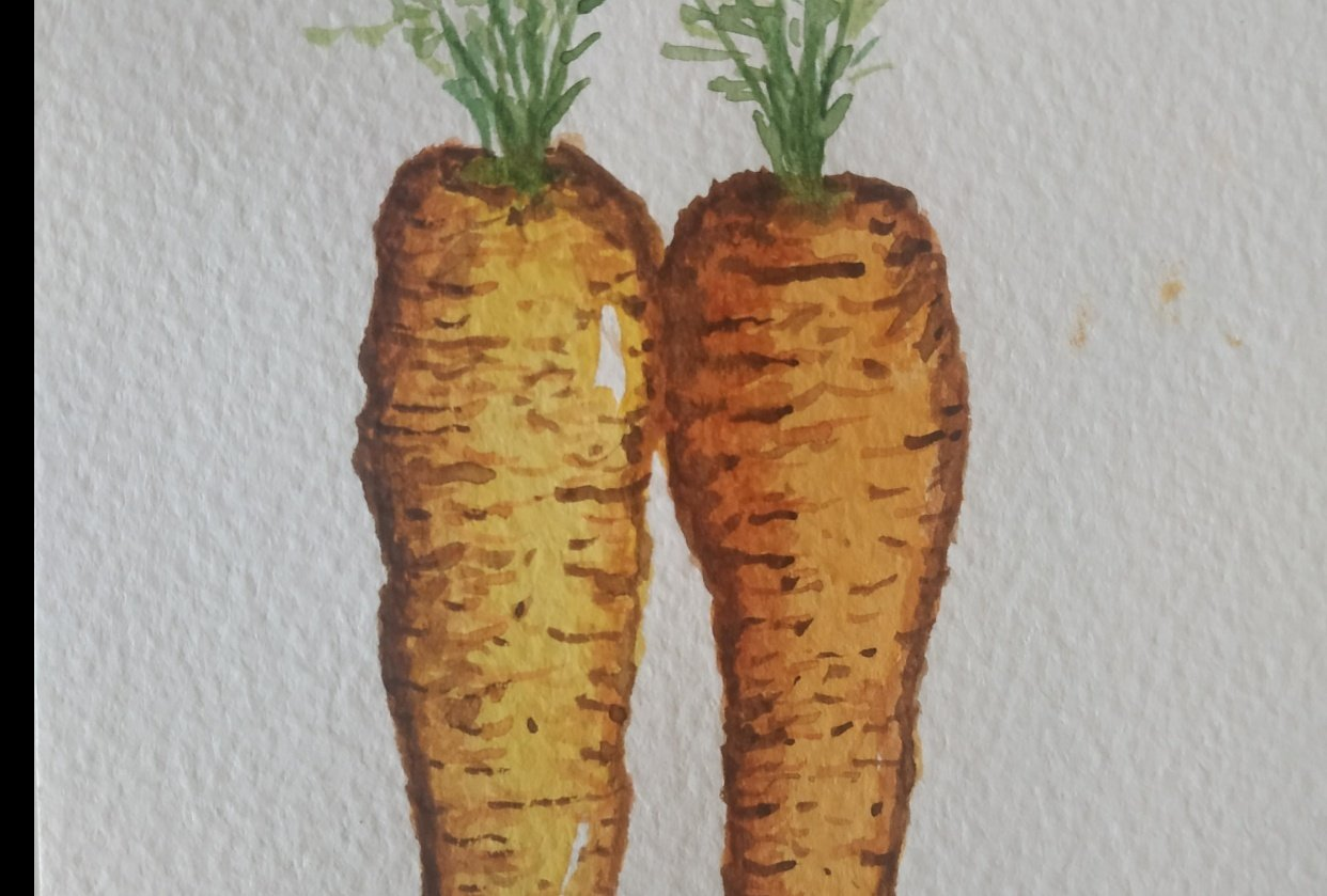 Just a couple of carrots - student project