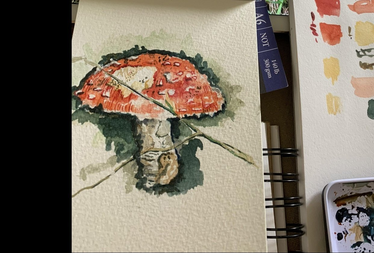 watercolour in the woods - student project