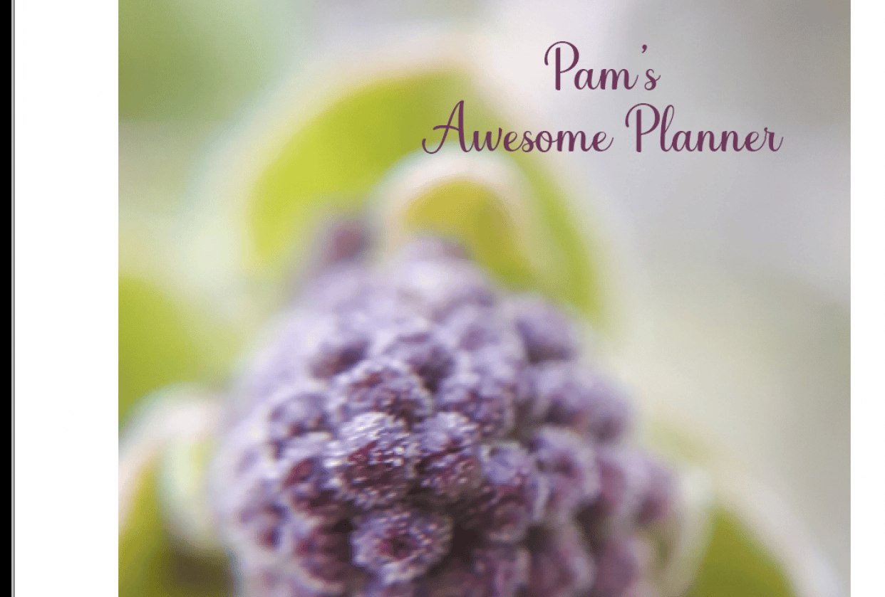 Pam's planner for publishing and printable - student project