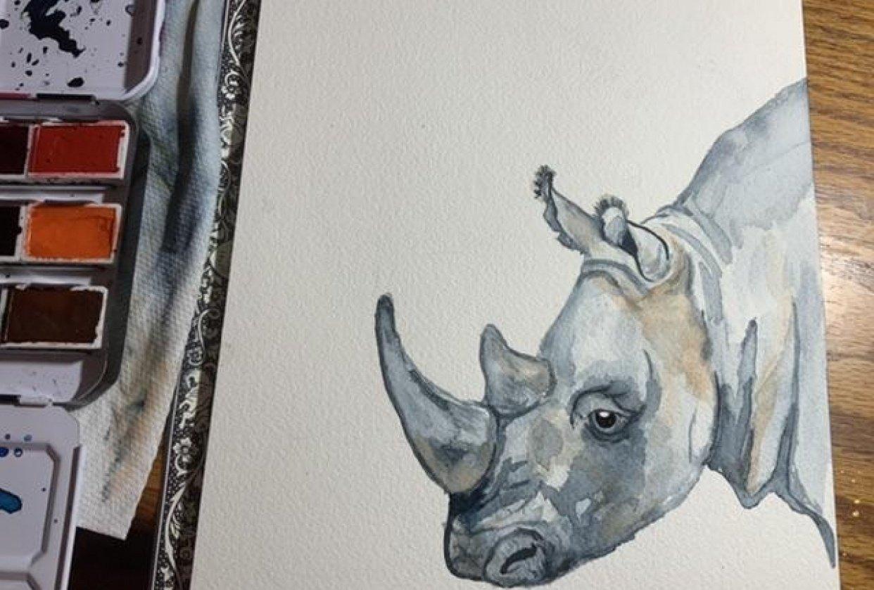 Tiny Rhino - student project