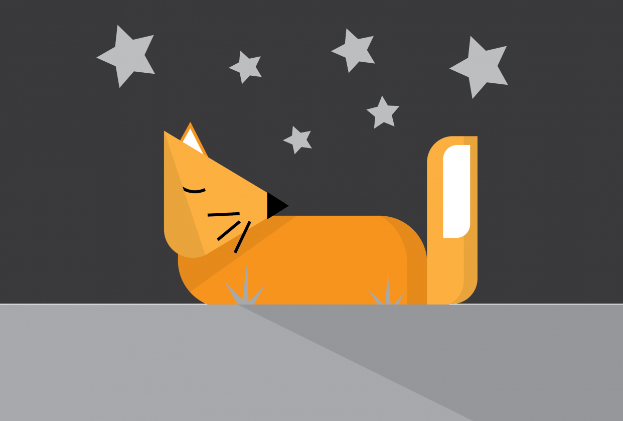 Sleepy Fox & Owl by Karla A. - student project
