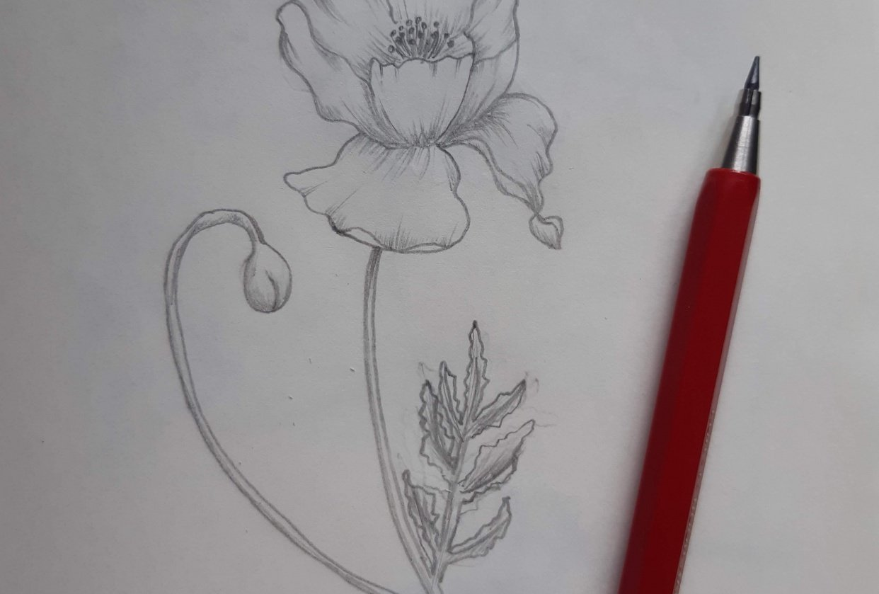 I love shading - student project
