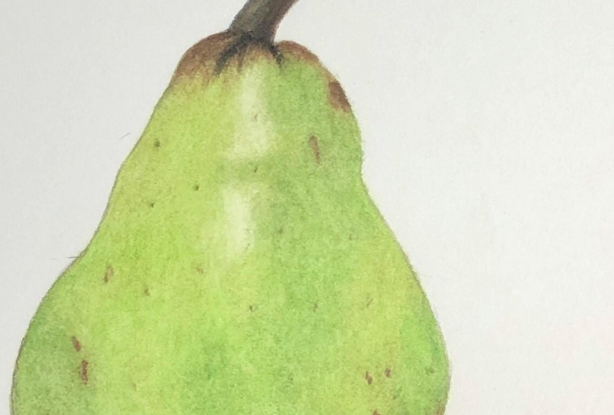 Pear - student project