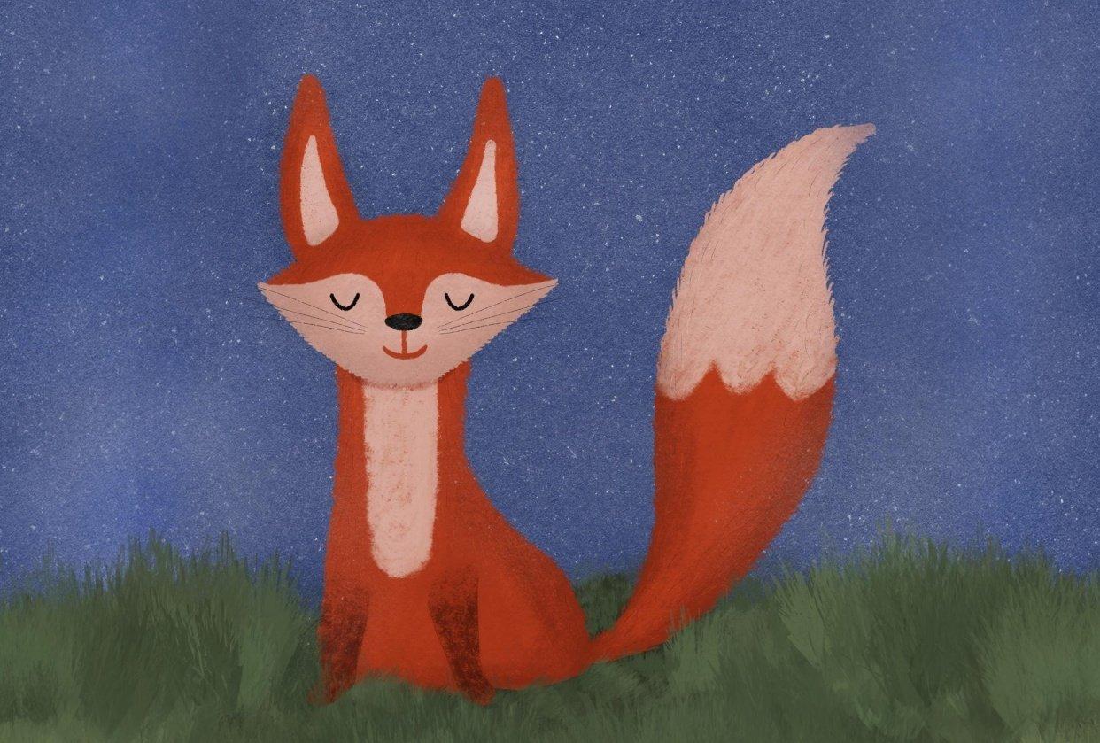 Mr. Fox - student project
