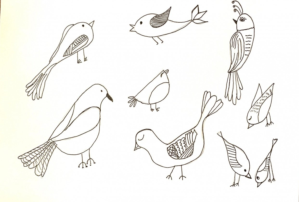 Birds with personality - student project