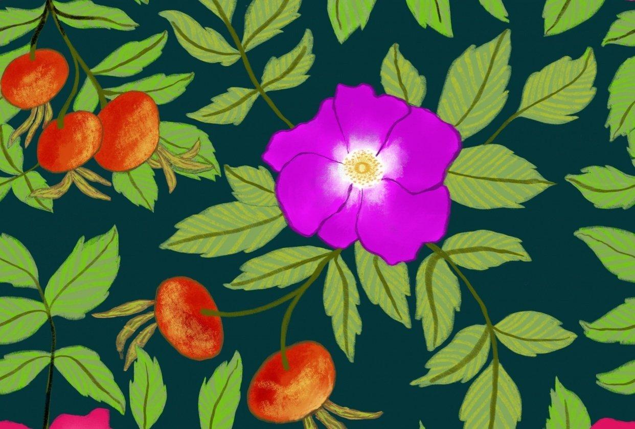 Rosa rugosa pattern - student project