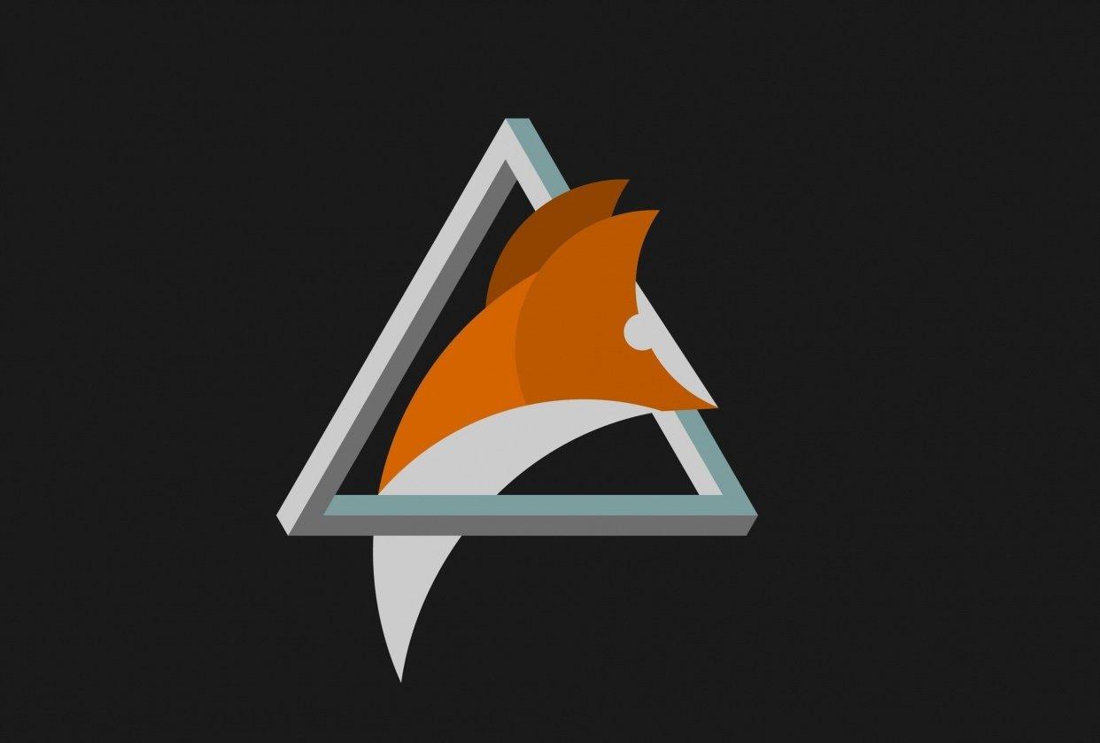 Triangle_Fox_Awake - student project