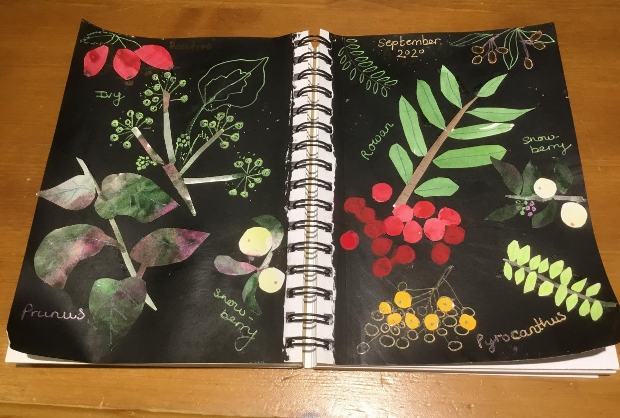 Autumn berries - student project