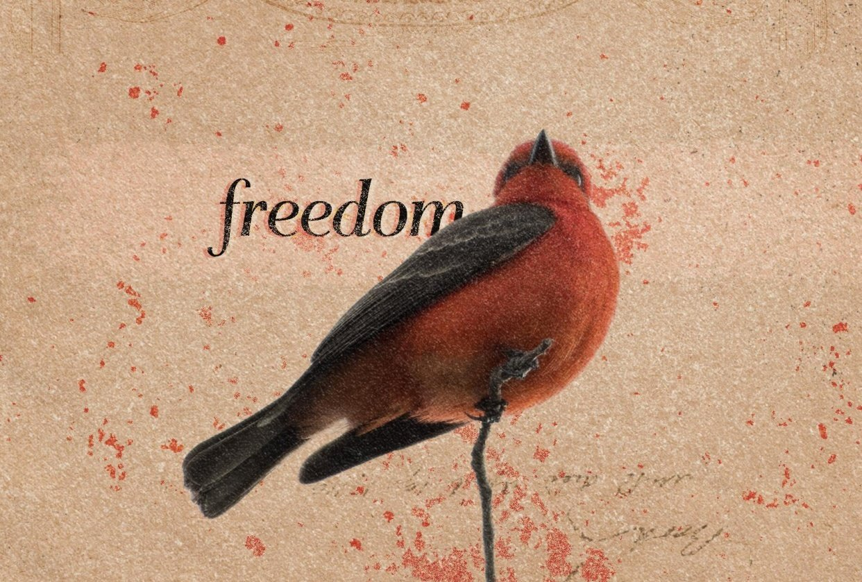Retro Collage - Freedom - student project