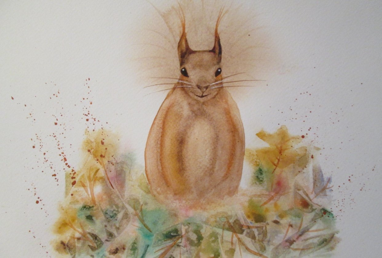 Sidney, the Red Squirrel - student project