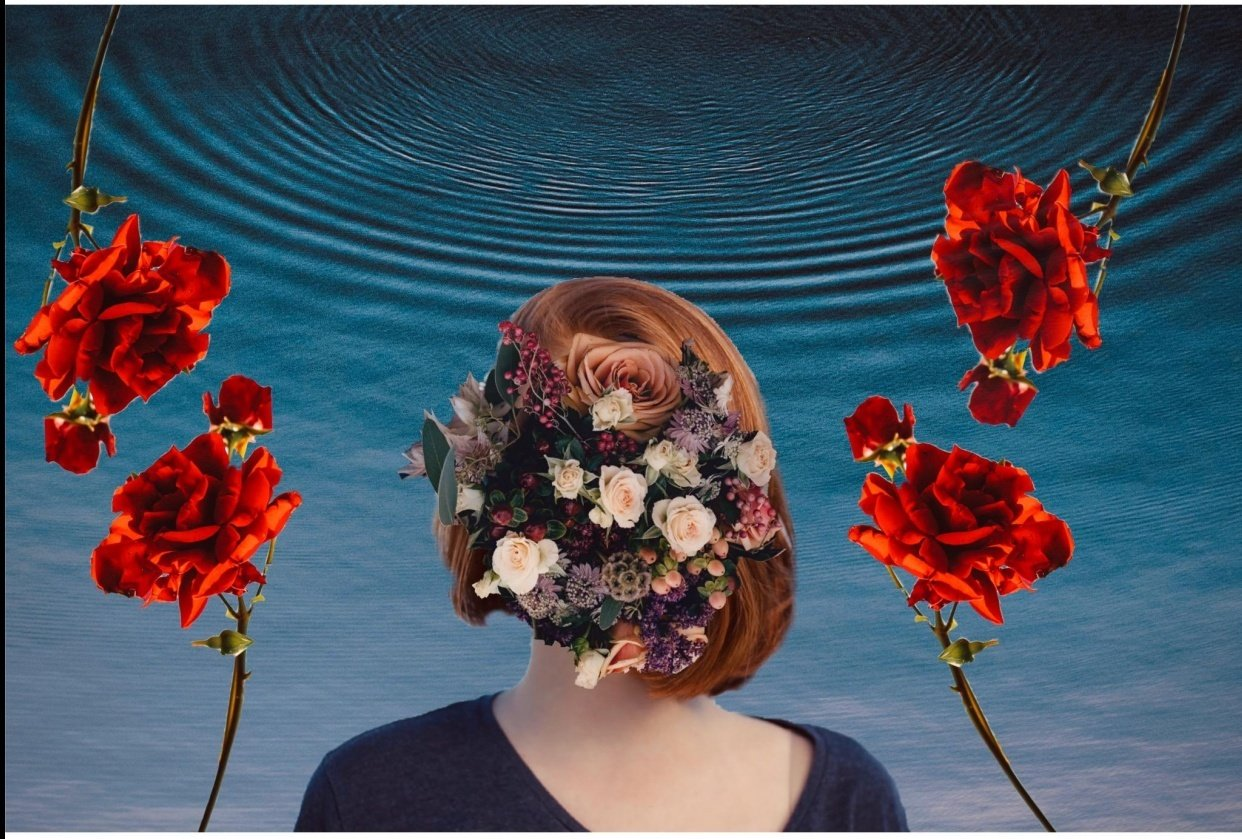 Wild roses - student project