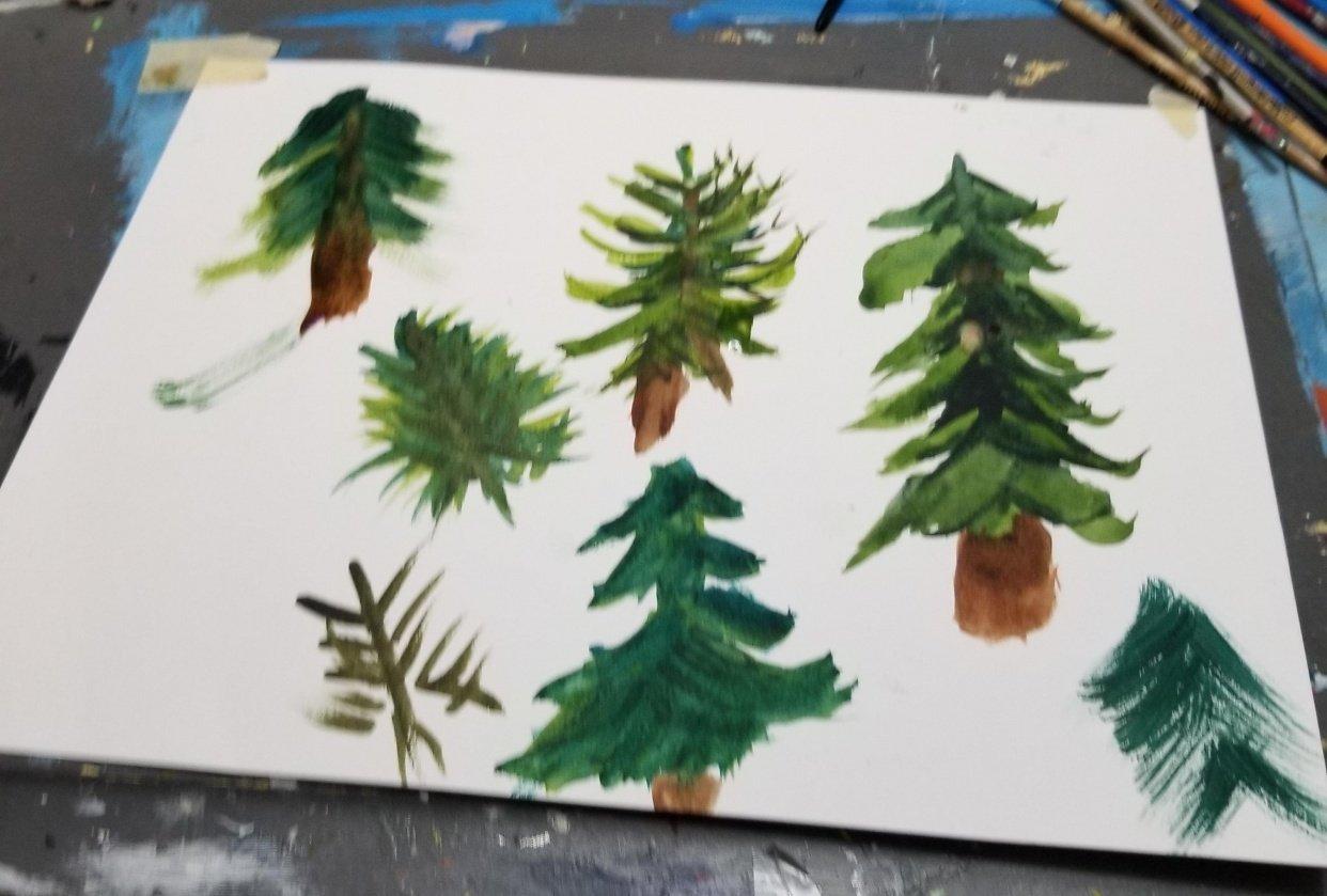 Pine tree practice - student project