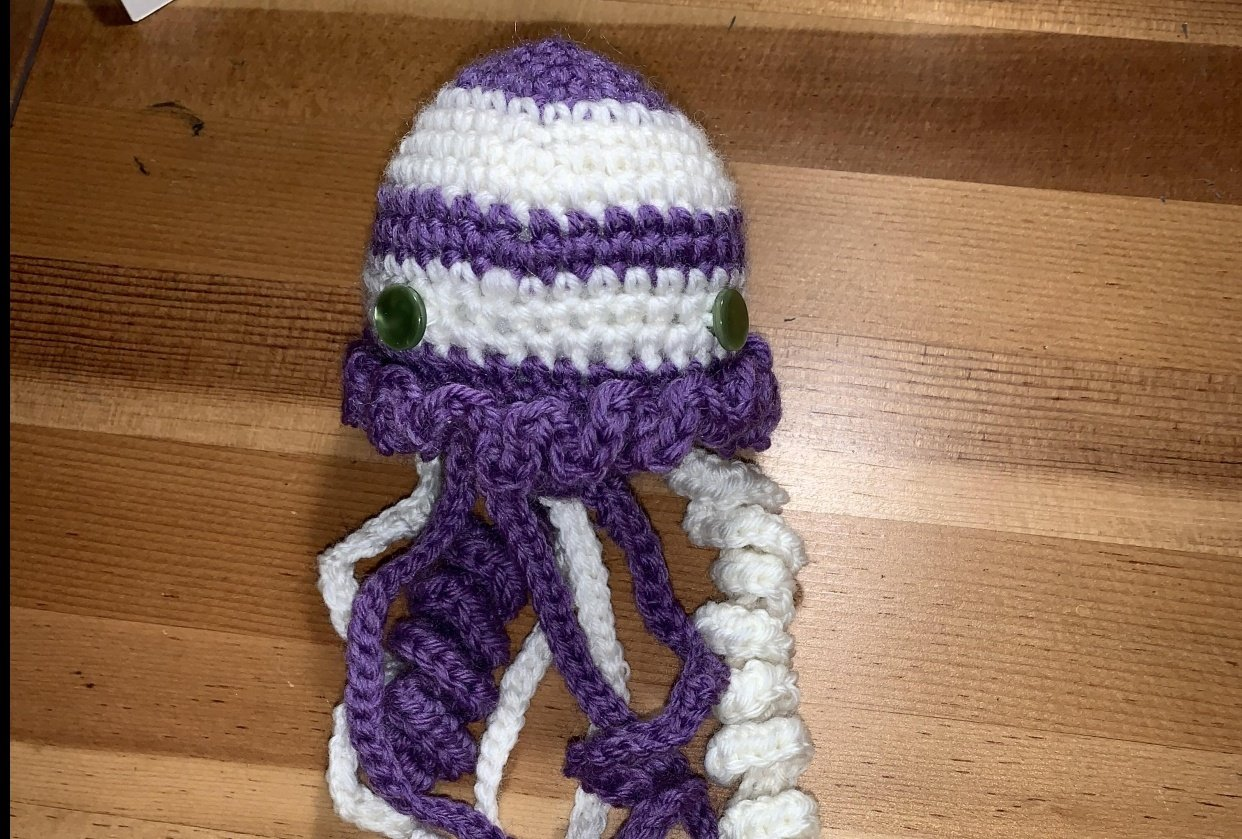 First crochet project - student project