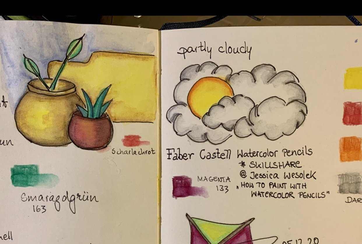 Watercolor Pencils Faber Castell - student project