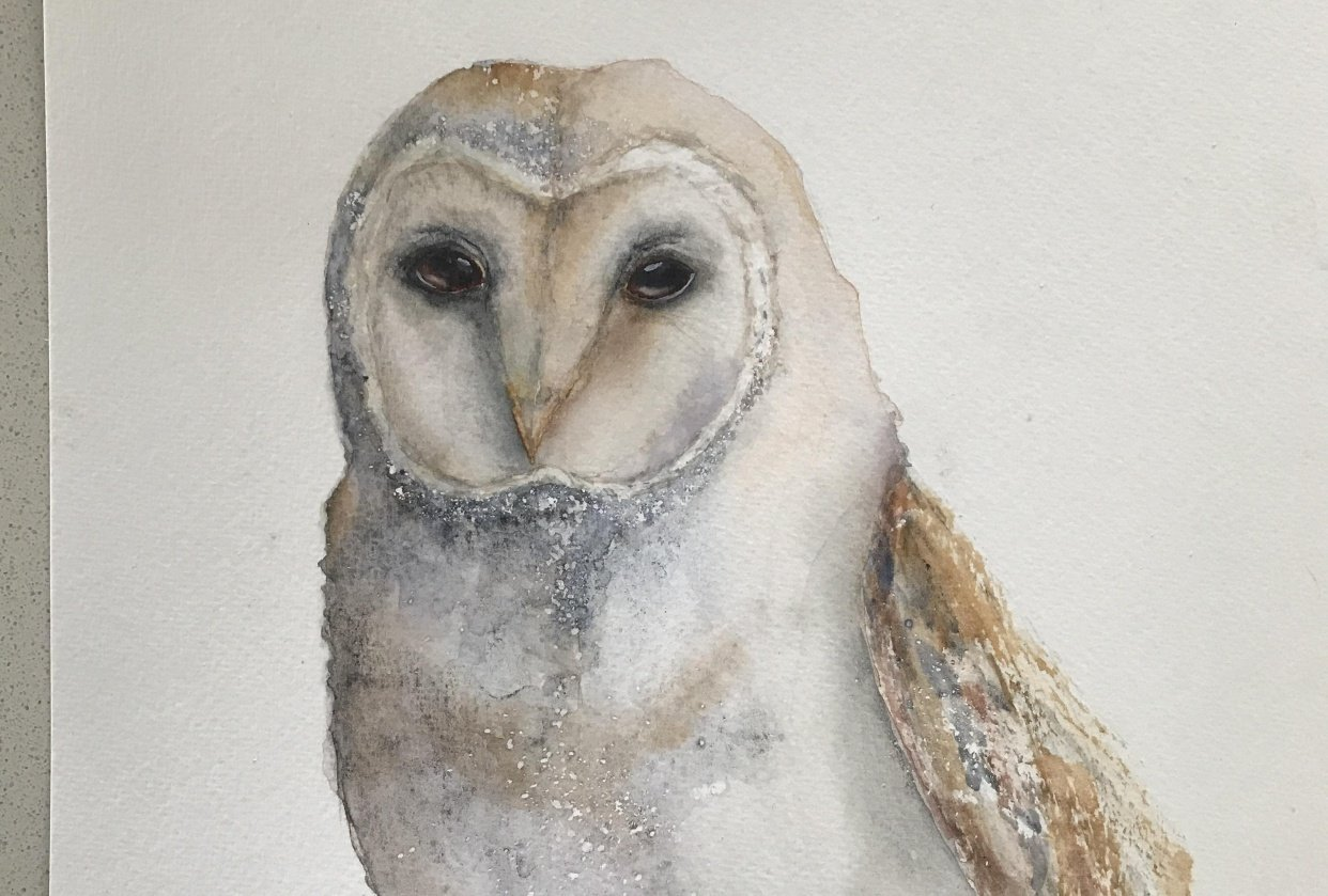 Magestic owl - student project