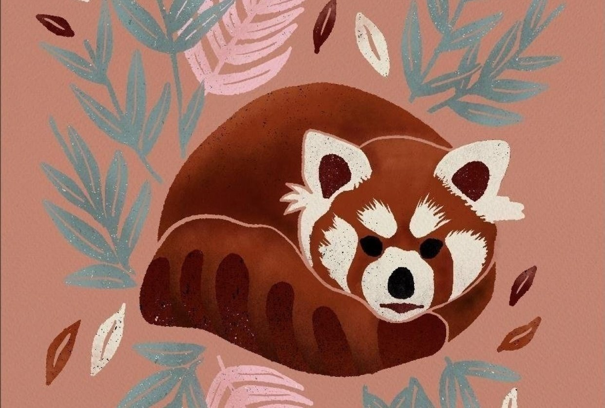 Red Panda - student project