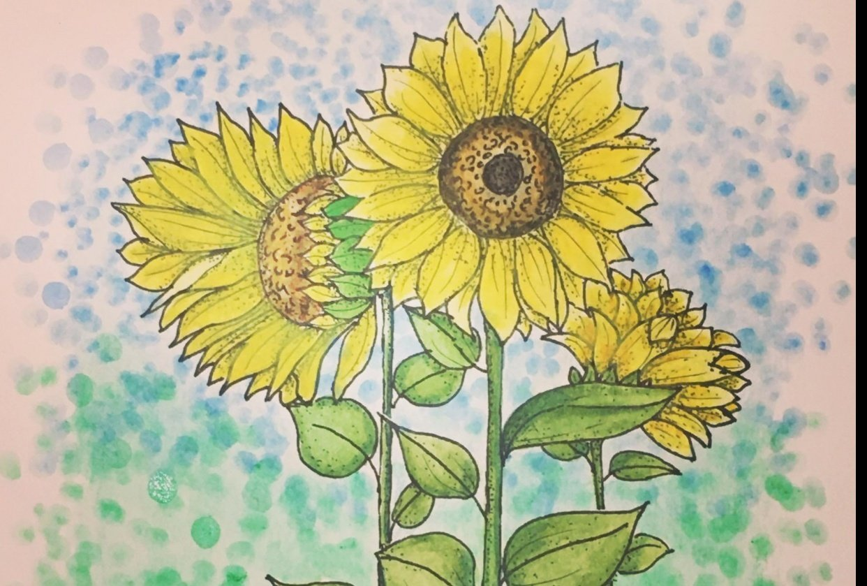 Fun with Sunflowers - student project
