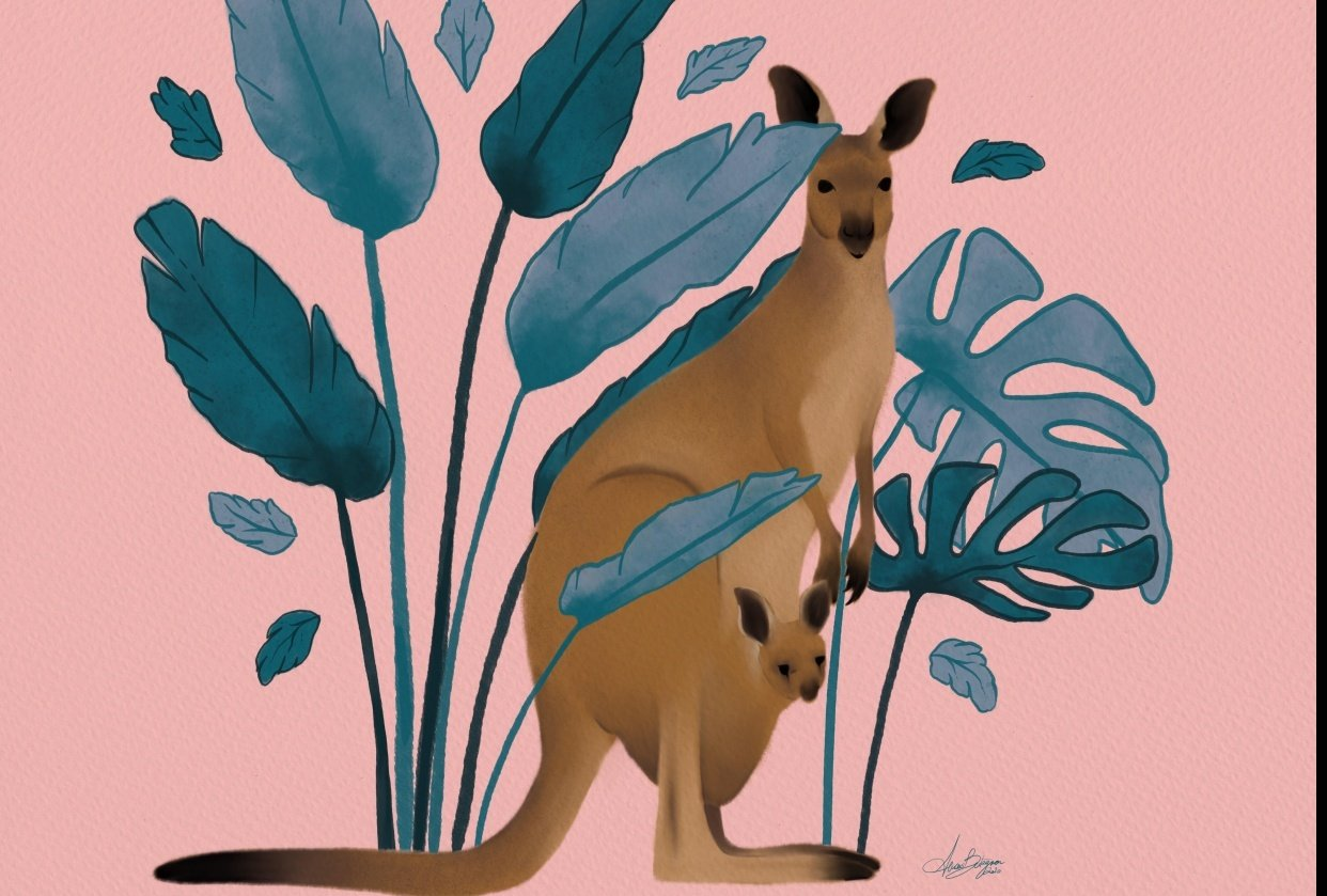 The cheaky Kangaroo - student project