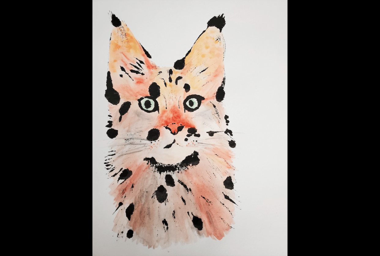 Why draw a flower when you can draw a cat? - student project