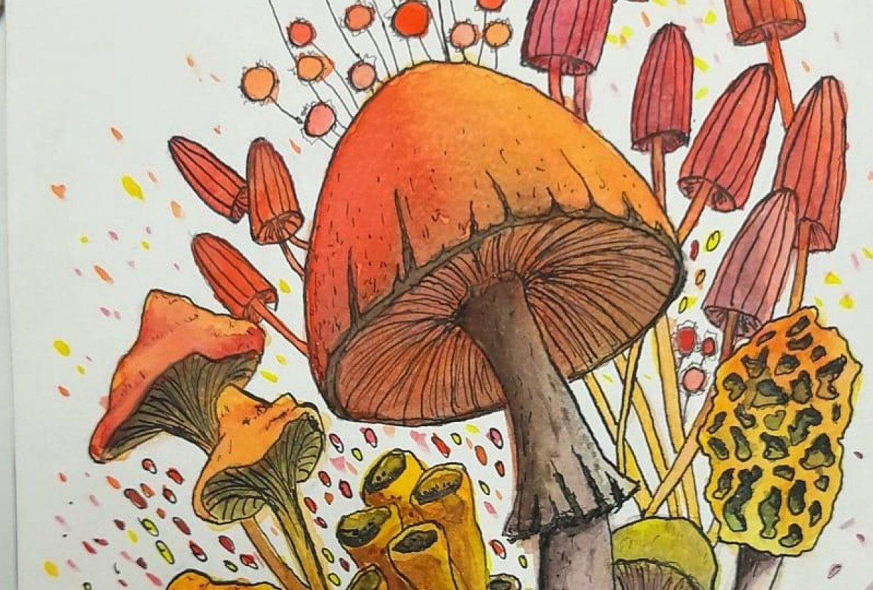 mushroom ink + watercolor - student project