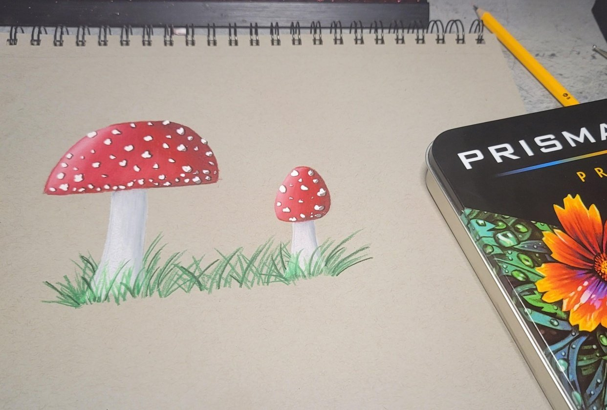 My Try At the Mushrooms - student project