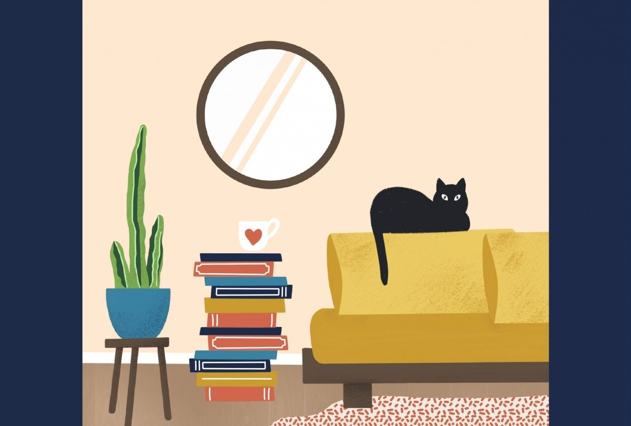 scene with a cat - student project