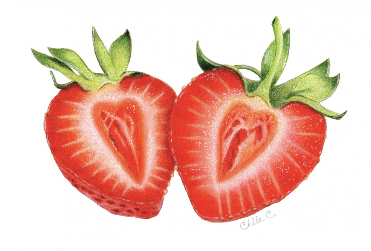 Strawberries in Colored Pencil - student project