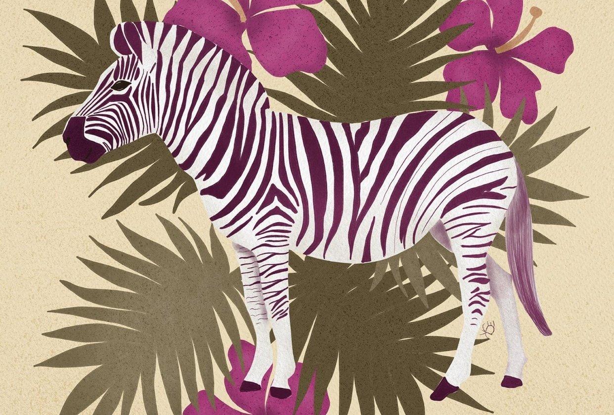 Zebra - student project