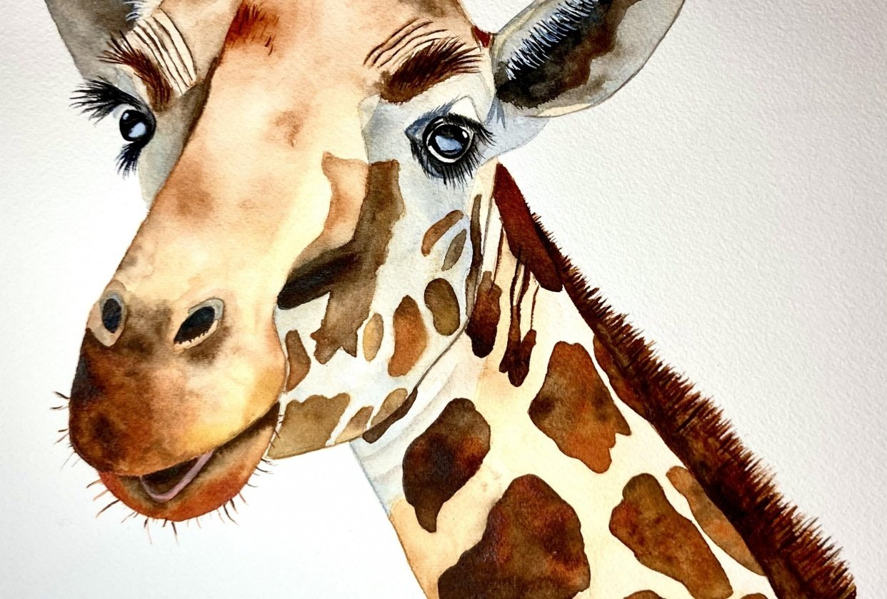 Watercolor giraffe - student project