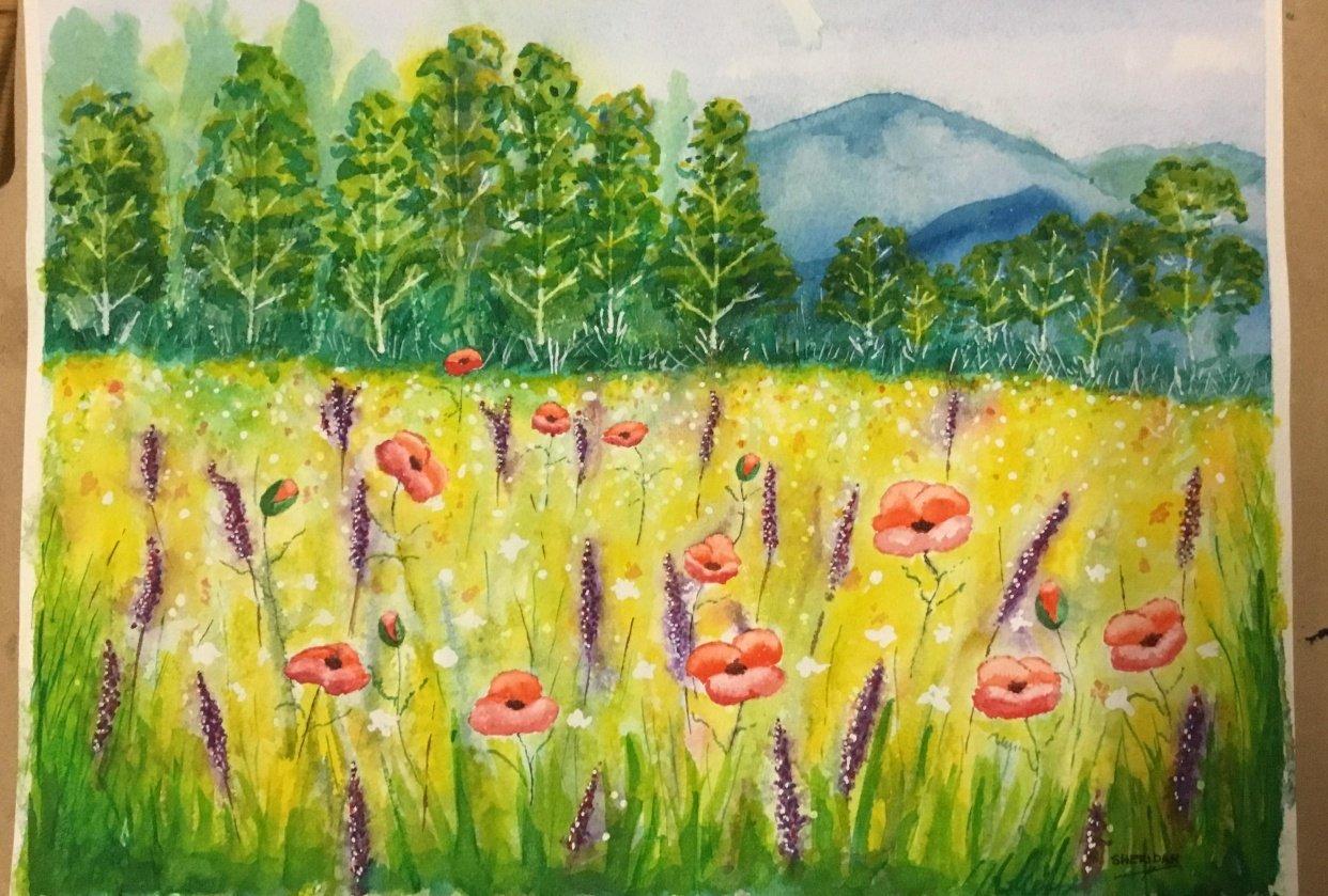 Poppy field - student project