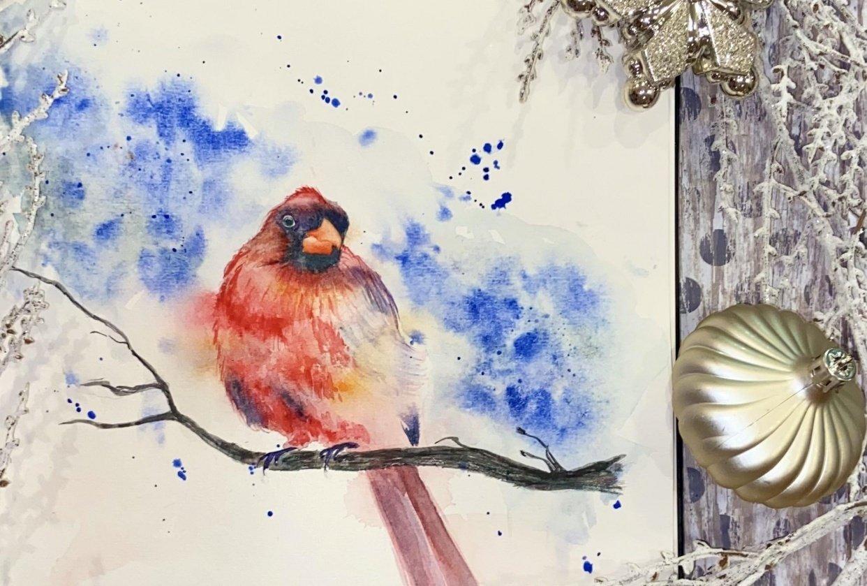 Winter birds - student project