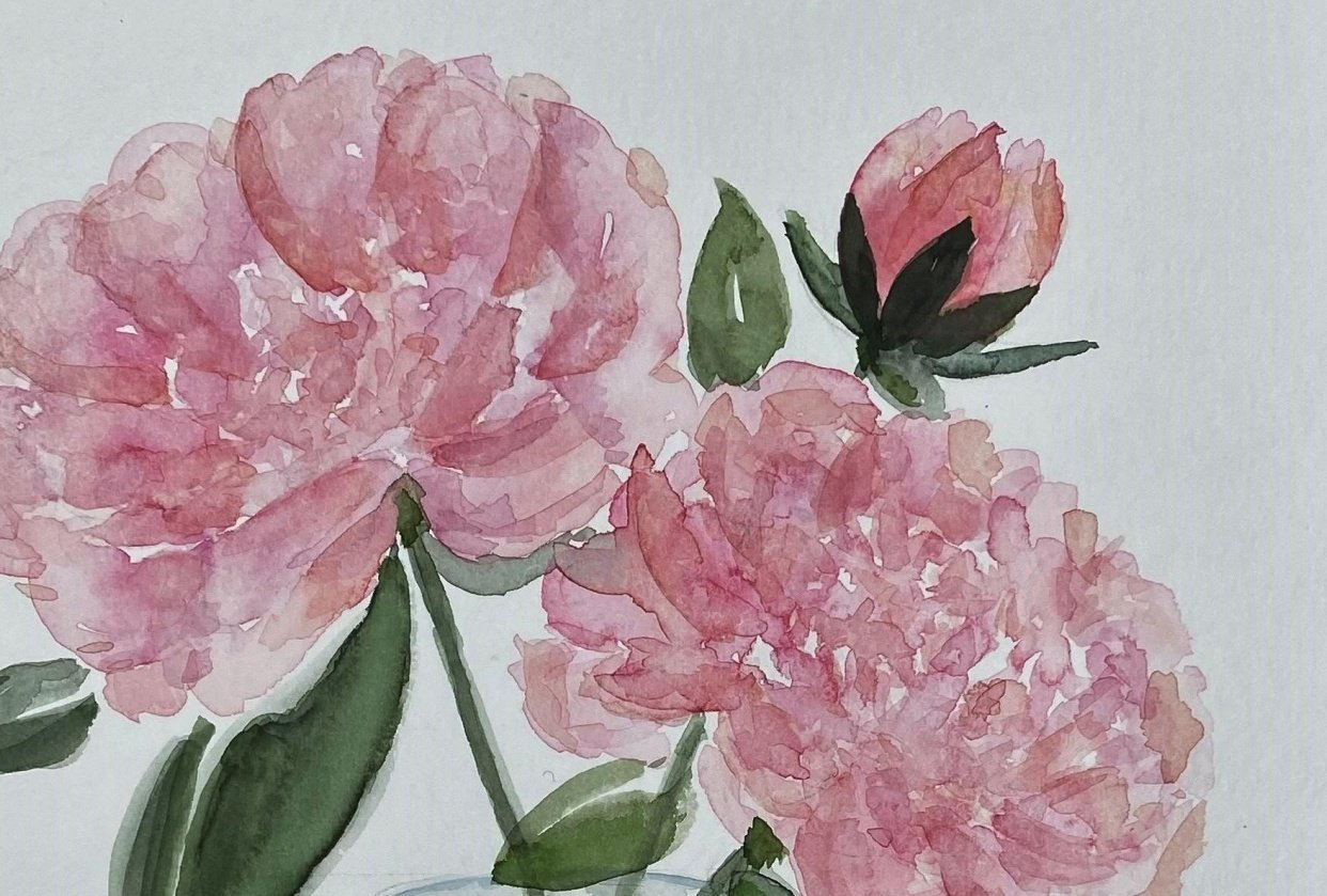 Peonies in a vase - student project