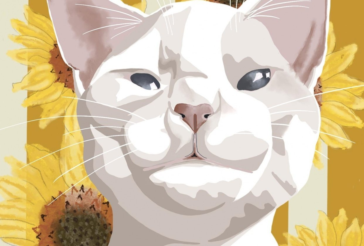 King Kitten - student project